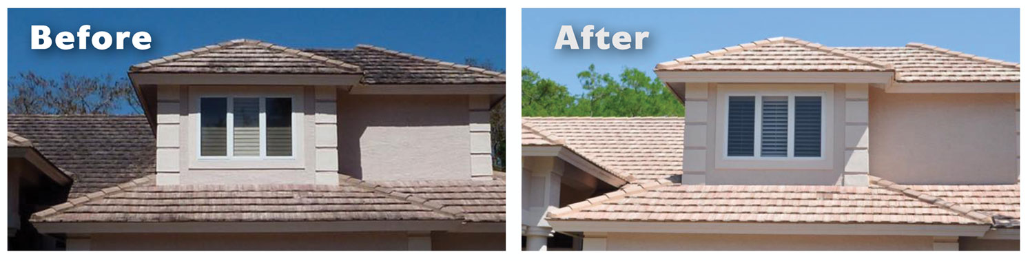 Roof cleaning comparison before and after